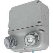 Hubbell DYN12 Dynamo Industrial LED Emergency Unit, Wet Rated, 3W LED Lamps
