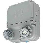 Hubbell DYN12I-06L Dynamo Industrial LED Emergency Unit, Wet Rated, 6W LED Lamps, Self-Diagnostics