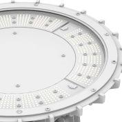 Hubbell PHB Performance LED Highbay w/ Flat Lens, Pendant Mt, 216W, 27000L, 50K, 120-277V, Gray