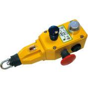 IDEM 142077B GLS Rope Pull Switch W/E Stops/LED, 2NC 2NO, 110/120v ac., Die Cast