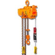 Ingersoll Rand MLK Chain Hoist 1100 Lb. Capacity 10 Ft Lift