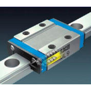 IKO MLFG14C1T1HS2 Stainless Steel Maint.-Free Linear Way, T1 Preload Long Block, Block Width 25 mm