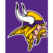 Minnesota Vikings 8'L Billiard Cloth