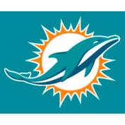 Miami Dolphins 8'L Billiard Cloth