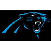Carolina Panthers 8'L Billiard Cloth