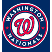 Washington Nationals 8'L Pool Table Cloth