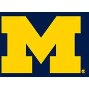 University Of Michigan 8'L Pool Table Cloth