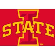 Iowa State University 8'L Pool Table Cloth