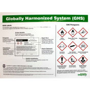 Impact® GHS Poster Label Identification - English - 799077