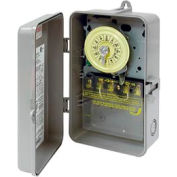 Intermatic T103P NEMA 3R - 24 Hour Dial Mechanical Time Switch, Plastic Case, 125V, DPST