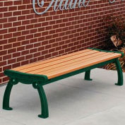Frog Furnishings Recycled Plastic 5 ft. Heritage Backless Bench, Cedar Bench/Green Frame