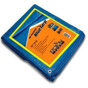 BOEN All Purpose Tarp, 10' x 10', Blue - BT-1010