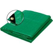 BOEN Heavy Duty Tarp 12x12 Weave, 50' x 100' Green - GT-50100