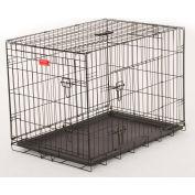 "Lucky Dog 2 Door Dog Training Crate 18""W x 21""H x 24""L, Black"