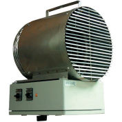 TPI Fan Forced Washdown Unit Heater H1H5503T - 3300W 240V 1 PH