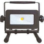Keystone 950 Lumen LED Area Flex Light, AC powered, 15 watts, 4000 K