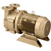 Dekker DV0150D-MB4-SGL Liquid Ring Vacuum Pump, 150 ACFM, 10HP