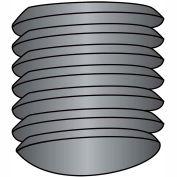 10-32X3/16  Fine Thread Socket Set Screw Oval Point  Plain Imported, Pkg of 50
