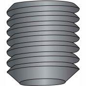1/4-20 x 5/16 Coarse Thread Socket Set Screw - Flat Point - Plain - Pkg of 100