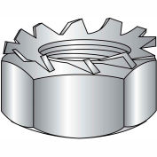 1/4-20  K Lock Nut 18 8 Stainless Steel, Pkg of 1000