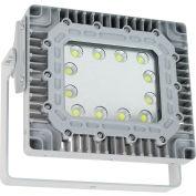 Larson Electronics EPL-LED-100W-RT-1227-125B-56K,  Expl Proof LED Flood Light,100W, 125 Deg,Surf Mnt