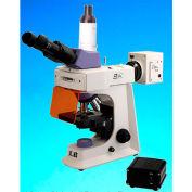 Labomed LB-264 Biological Trinocular Fluorescent Microscope with LED Illumination