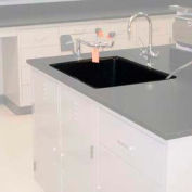"Epoxy Drop-In Sink, 24""W x 16""D x 8""H"