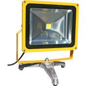 Lind Equipment LE970LED-FS Portable Heavy-Duty LED Flood Light - 50W, Floor Stand
