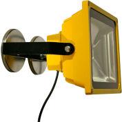 Lind Equipment LE970LED-MAG Portable Heavy-Duty LED Flood Light - 50W, Magnet Mount
