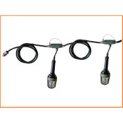 Lind Equipment TLS-50XP Explosion Proof Stringlights, 50', 5 Lights, w/Expl. Proof Plug & Connector