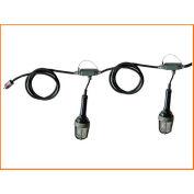 Lind Equipment TLS-50XP Explosion Proof Stringlights, 50', 5 Lights, w/Expl. Proof Plug & Connector