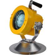 Lind Equipment XP1830LED-50P 39W Led Explosion-Proof Floodlight, w/ 50' Cord & Plug