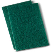 "Premiere Heavy-Duty Scour Pad 6"" x 9"", Green 15/Case - PMP186"