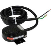 Linemaster 491-SC36MP Compact Foot Switch W/6' Cord and Mounting Bracket, Momentary, Black, Steel