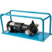 Transfer Pump Skid - Single Speed Medium Viscosities