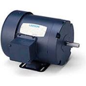 Leeson 102684.00, Standard Eff., 0.33 HP, 3450 RPM, 208-230/460V, 48, TEFC, Rigid