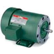 Leeson 102795.00, Standard Eff., 0.5 HP, 1725 RPM, 115/230V, 48C, TEFC, C-Face Rigid