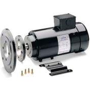 Leeson Motors DC Motor IEC Metric 1.1KW, 3000RPM, 80D, IP54, 180V, S1, 40C, 1.0SF, Special