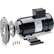 Leeson Motors Metric DC Motor-1.1KW, 24V, 3000RPM, IP44, Special