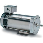 Leeson Motors Washdown DC Motor-1/3HP, 90V, 1750RPM, TENV, Rigid C