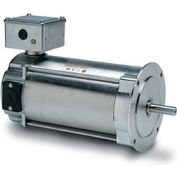 Leeson Motors Washdown DC Motor-0.37KW, 180V, 1750RPM, IP55, Metric