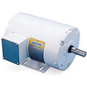 Leeson Motors Motor Washdown Motor-3/4HP, 208-230/460V, 1725RPM, TEFC, RIGID, 1.15 SF, 77 Eff.