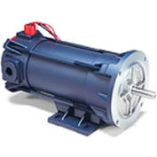 Leeson Motors Explosion Proof DC Motor-.50HP, 90V, 1750RPM, TENV, Rigid C