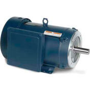 Leeson Motors 3-Phase Farm Ag Motor 10HP, 1765RPM, 215Tc, TEFC, 208-230/460V, 60/50HZ, Rigid C