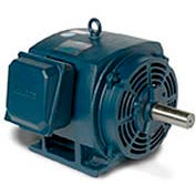 Leeson 170006.60, Premium Eff., 20 HP, 1775 RPM, 208-230/460V, 256T, DP, Rigid