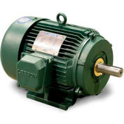 Leeson 171633.60, Premium Eff., 20 HP, 1775 RPM, 208-230/460V, 256T, TEFC, Rigid