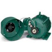 Leeson Motors Thru-Shaft Encoder Kit 250 Frame