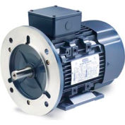 Leeson 192035.00 IEC Metric Motor, 0.5HP, 230/460V, 1695 RPM, IP55, B3/B5, 1.15 SF, 74 Eff.