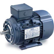 Leeson Motors Motor IEC Metric Motor-1/1HP, 230/460V, 1725/1410RPM, IP55, B3/B14, 1.15 SF, 80 Eff.