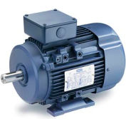 Leeson Motors Motor IEC Metric Motor-1.0HP, 575V, 3390RPM, IP55, B3, 1.15 SF, 75.5 Eff.